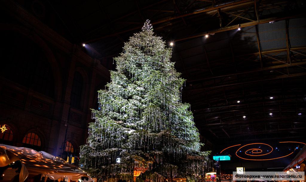 Новогодняя Ёлка в Цюрихе