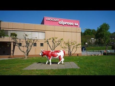 Музей шоколада alprose рядом с Лугано. Корова на лугу. Памятник.